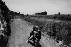 Baracche-allAcquedotto-Felice_-Roma_1958-ca