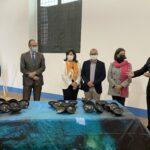 L'Allard Pierson Museum di Amsterdam restituisce 38 reperti archeologici alla Sicilia
